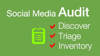 Brandle - Social Media Audit
