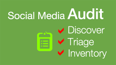 Brandle - Social Media Audit