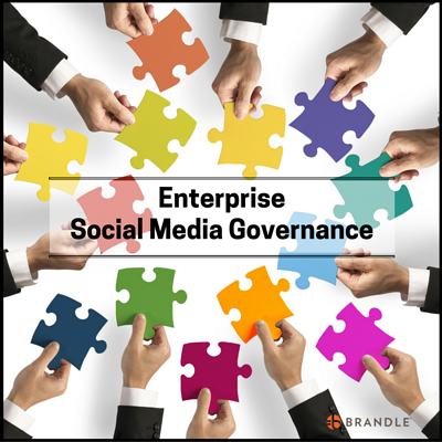 Social_Media_Governance-_Brandle.png